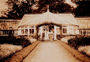 early photos of glasshouse_0005